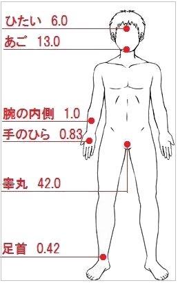 ステロイド軟膏の吸収率(体の正面)