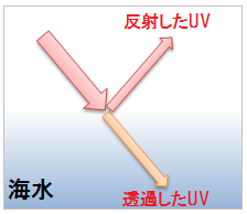海水で反射する紫外線と透過する紫外線