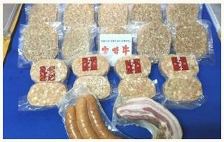 都城市宮崎牛ハンバーグとバラエティ3kgセット