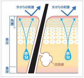 乾燥肌のバリア機能改善イメージ