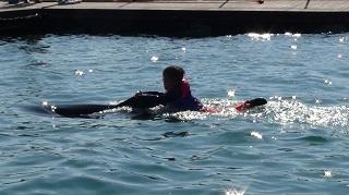ドルフィンスイム イルカと泳ぐ少年