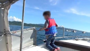 イルカが集まるのを見学する子供