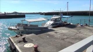 イルカウォッチング漁船