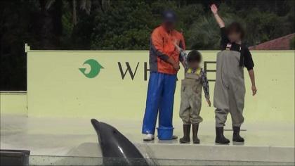 イルカにサイン(手を上に振り上げる)